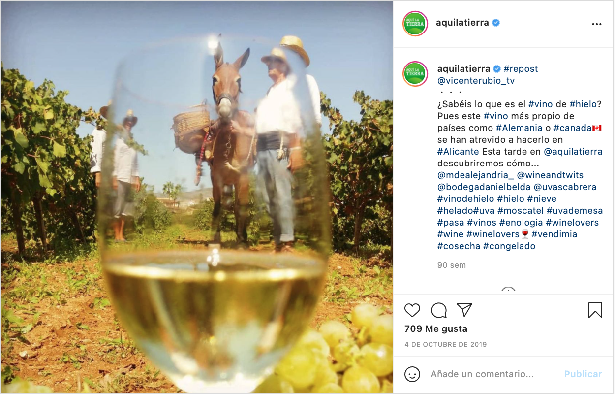 instagram divulgación ambiental