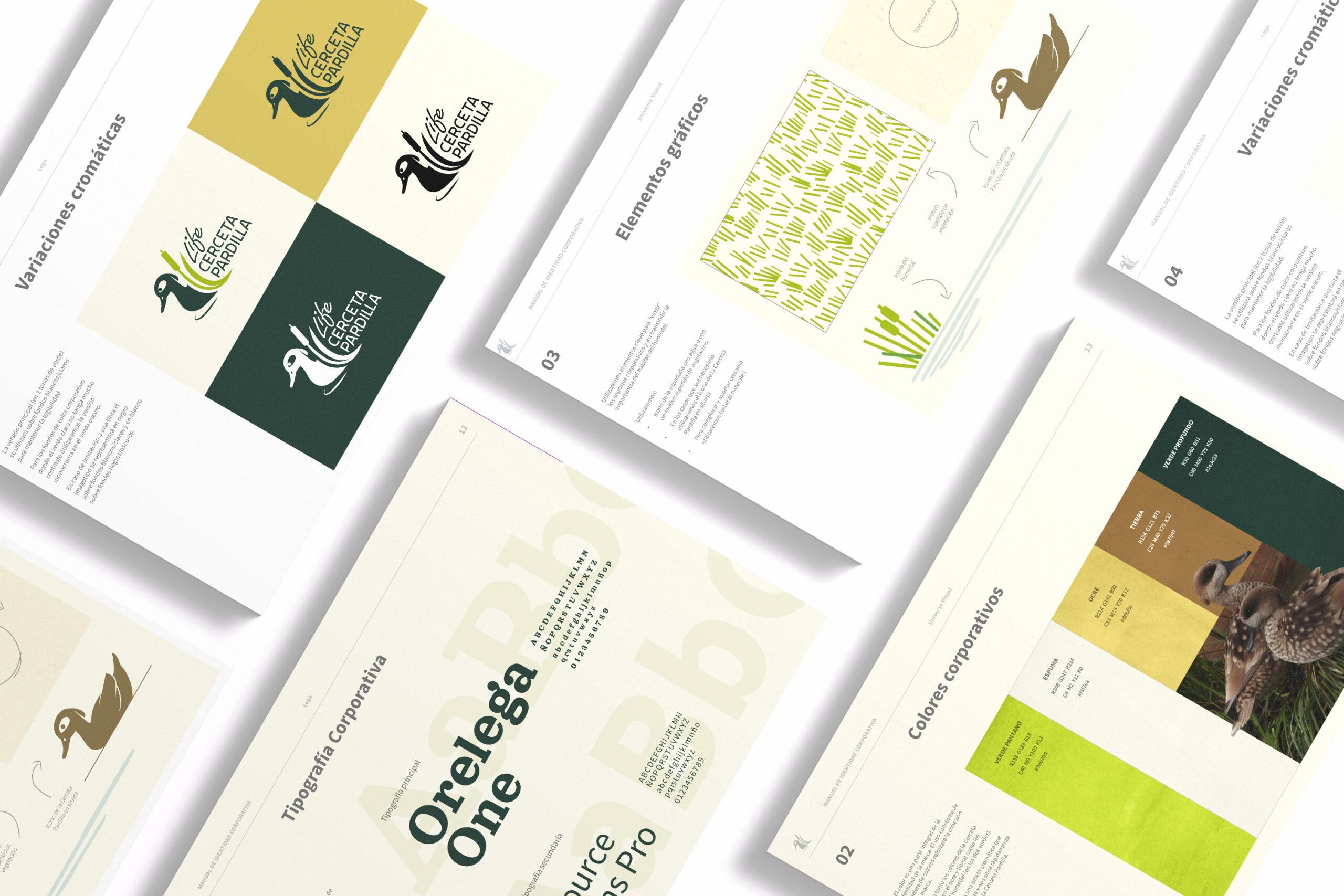 Diseño gráfico en Life Cerceta Pardilla