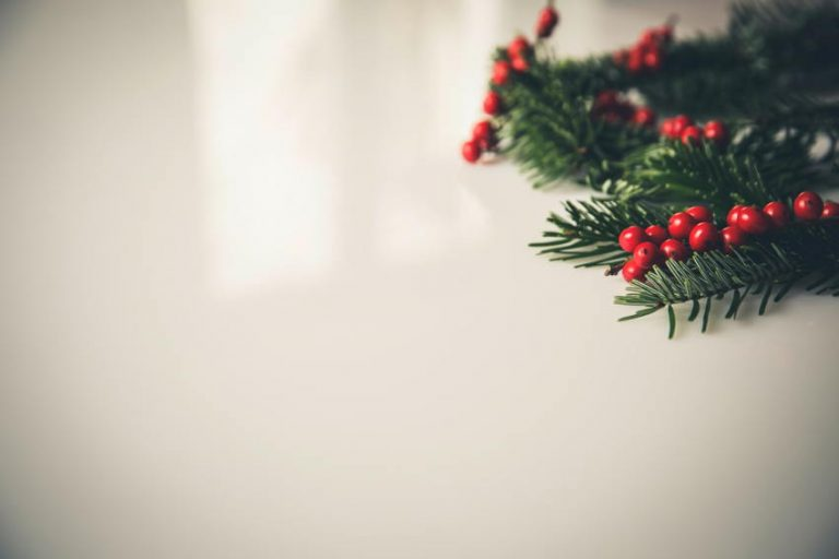 Marketing verde: campañas publicitarias en Navidad