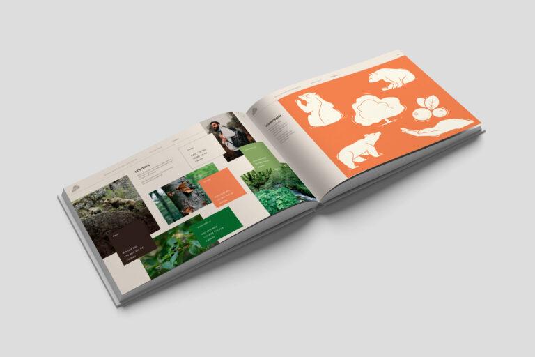 diseño gráfico osos con futuro